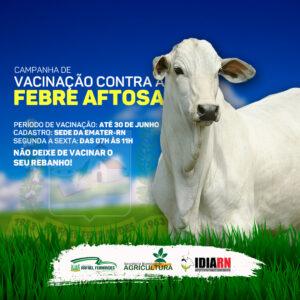 Campanha contra Febre Aftosa segue até 30 de junho, produtores rafaelenses devem procurar a EMATER-RN para cadastro